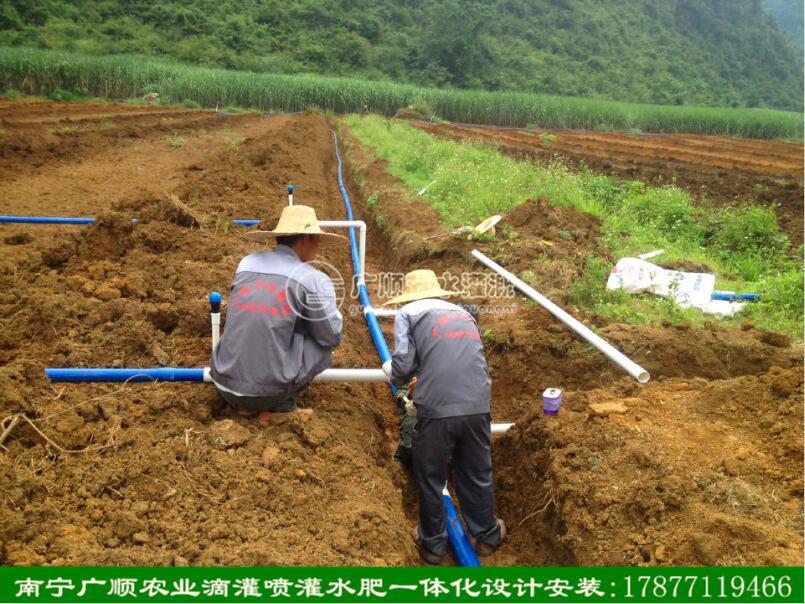 现场免费指导安装滴灌 广西滴灌管 南宁滴灌管 灌溉设备 滴灌设备