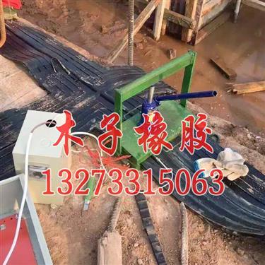 安顺-止水带硫化焊接机接头硫化机专属公司