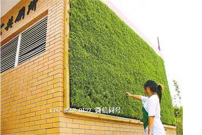 水果店装饰人造草坪施工组织设计