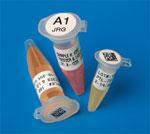 实验室低温冷冻条码标签