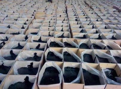 七台河沥青路径灌缝胶-专业耗益厂家-品量包管