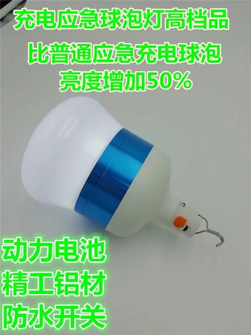 应急灯泡/地摊灯/充电应急球泡厂商