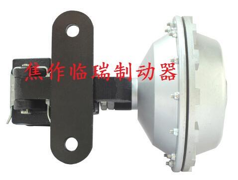STOSTW28气动盘式制动器焦作金箍