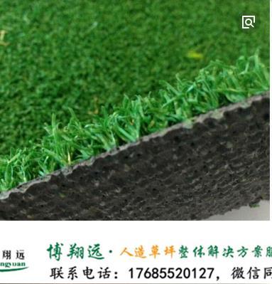 衡水故城县老干部门球场塑料草坪使用时间长