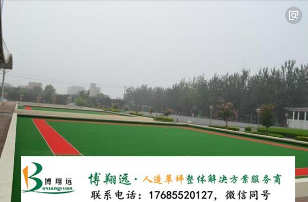 黄山祁门县韩国进口假草皮质优价低