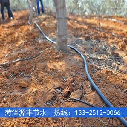 郴州山地果树滴灌主管道一亩多钱