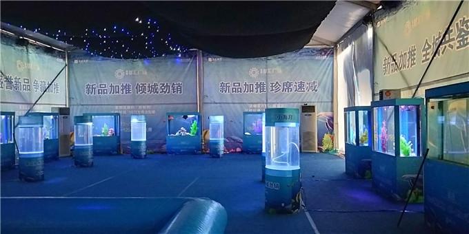 甘肃省武威市-给力的海狮表演现场互动