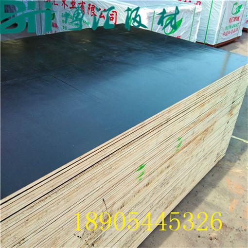 建筑黑模板实木拼接建筑黑模板拼缝少无空洞博汇胶合板