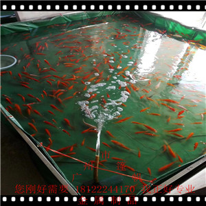 �B�~池�做�B殖池�\�池�B殖池帆布�~池定做支架水池泳池�B�~池