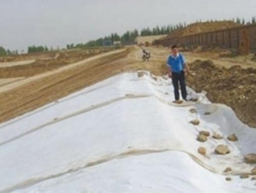 雷州供应商直供塑料盲沟-透水土工布-保湿土工布型号-土工建材材料