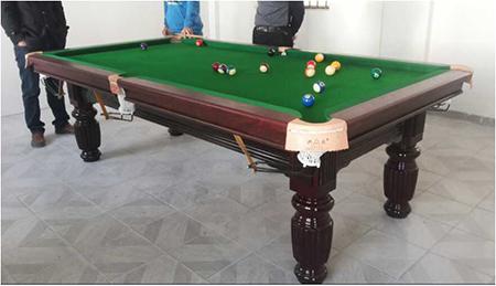 惠州市健身器材美式8球台球桌英式斯诺克桌球台