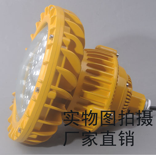 防爆LED照明��RWX8202
