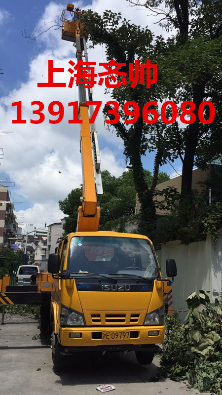 上海松江区路灯车出租报价_松江区树枝修剪作业车出租_很安全