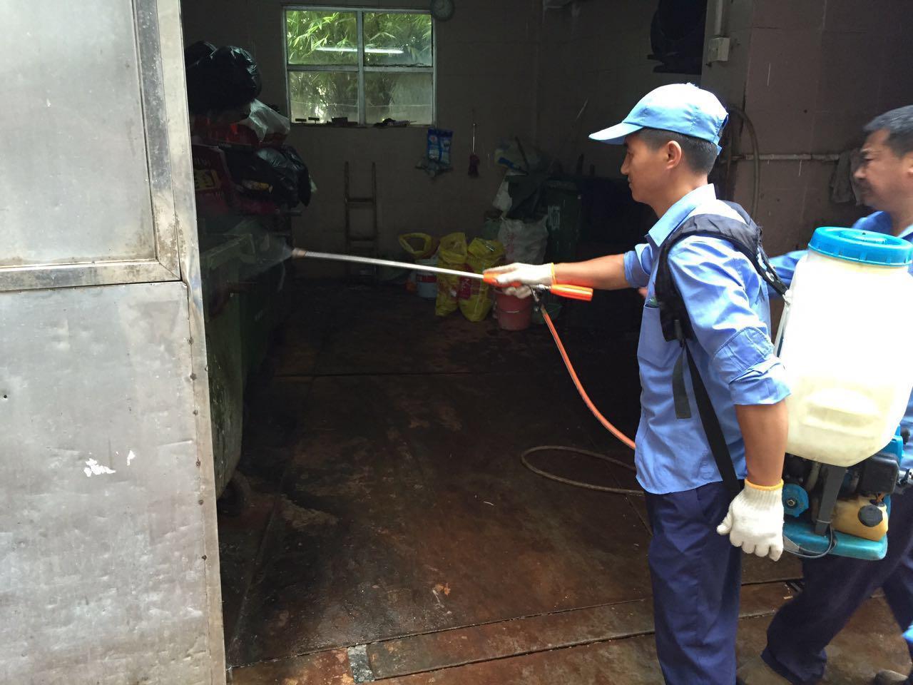 广州番禺上门办公室楼家庭预防治白蚁测除甲醛服务