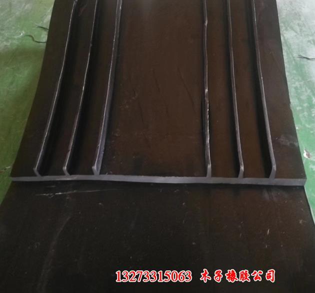 欢迎订购扬州橡胶止水带-技术支持