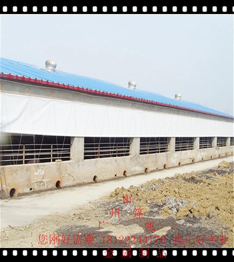 白色透明PE养殖场卷帘布猪场卷帘布防寒保暖帆布篷布