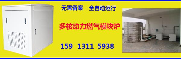 眉山仁寿县燃气模块炉制造企业有哪几家靠谱的