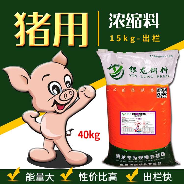 银龙猪用浓缩料育肥猪饲料效果真不错
