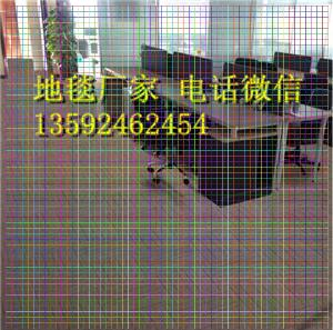 洛阳市栾川县老人房间防滑地毯防摔地毯加厚地毯零售批发