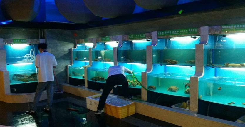 【海鲜设备有限公司】榆树鱼缸生产厂家+双阳鱼缸