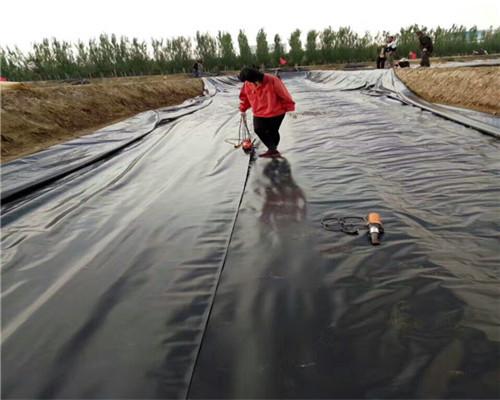 丙纶土工布保湿土工布启东土建建材施工材料