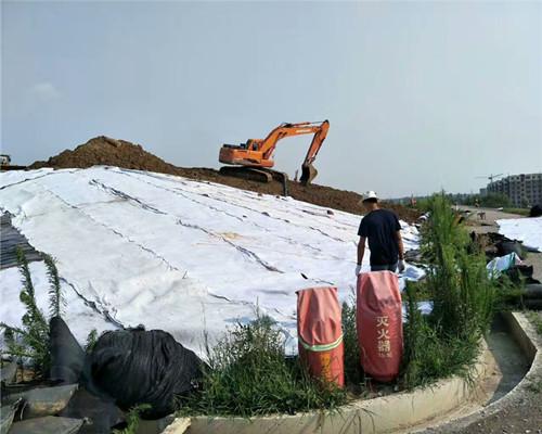 长丝土工布防渗土工布邻水土建建材施工材料