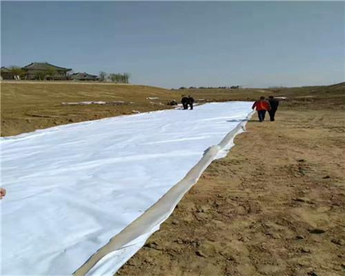 无妨土工布透水土工布灌云土建建材施工材料