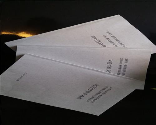 槐蔭可行性研究報告編寫-給發改委看