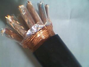 ZRA-DJYVP2R电缆电缆价
