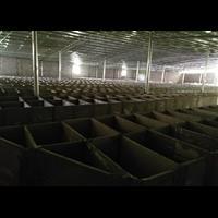 化州市竹鼠养殖基地、包技术销售