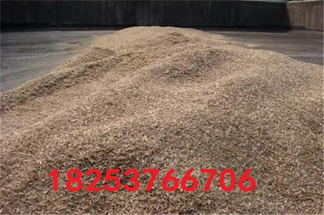 德惠沙打旺種子、沙打旺種子適合哪里種植