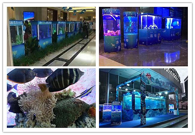 暖场海洋动物展览-赤水市