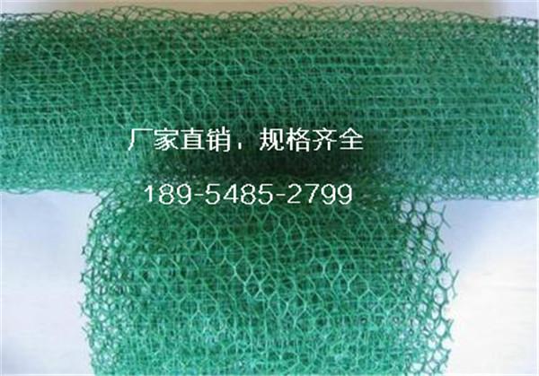 重庆重庆招商门市价三层三维网土工网垫