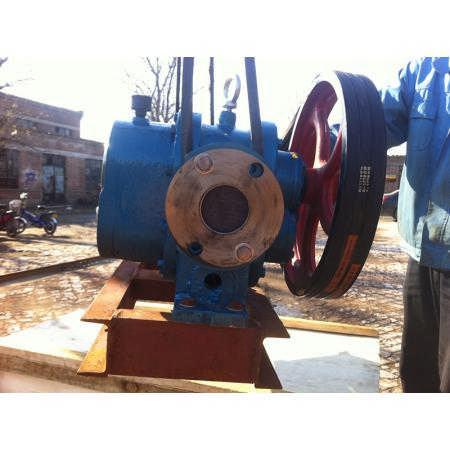 高温齿轮式油泵大口径罗茨油泵高温热油泵寿命长效率高