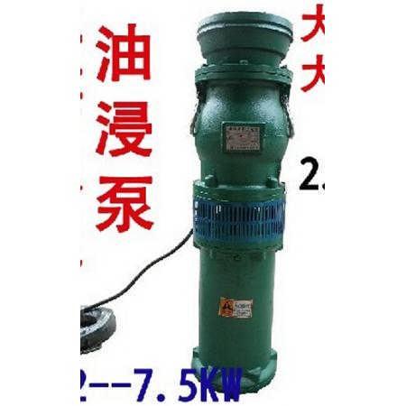 不锈钢直流螺杆潜水泵4860V通用高扬程电瓶车抽水泵油浸式深井泵