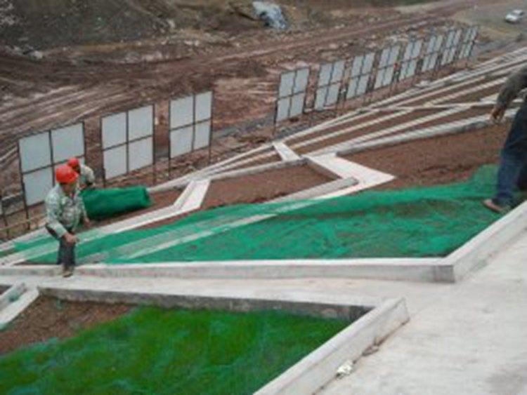 欢迎光临黑龙江哈尔滨市三维植被网价格三维植被网厂家有限公司-欢迎您