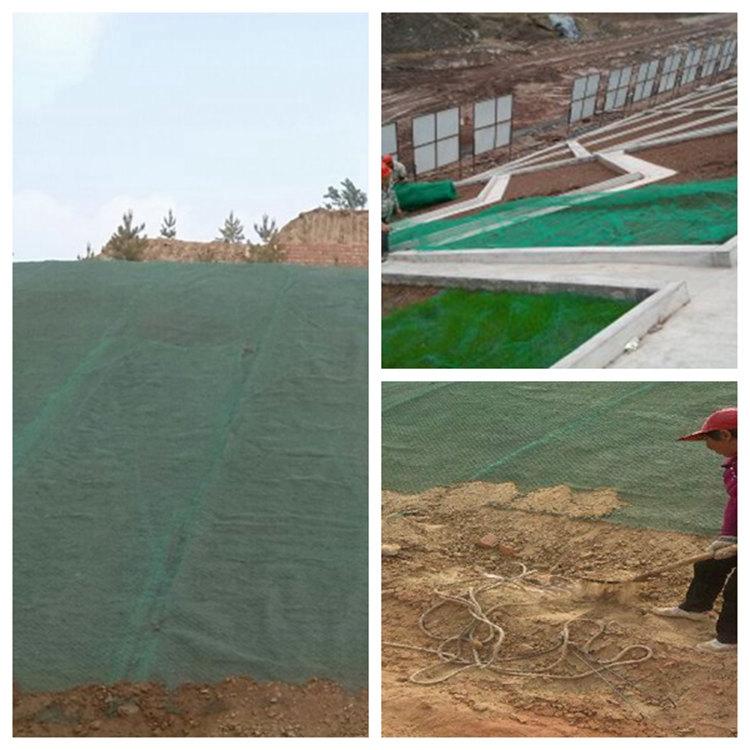 招商三维土工网垫规格、内蒙古赤峰市三维土工网垫规格齐全、三维土工网垫哪里卖