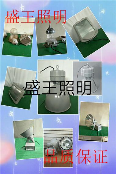 GMD6120B升降式照明灯