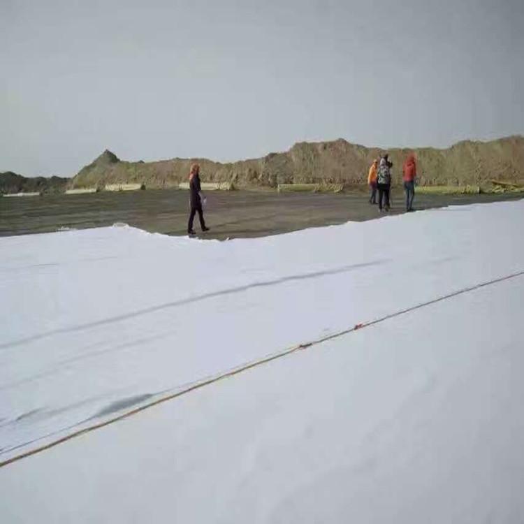 衡阳鱼塘藕池蓄水池用400g防渗土工膜厂家四方格供货商