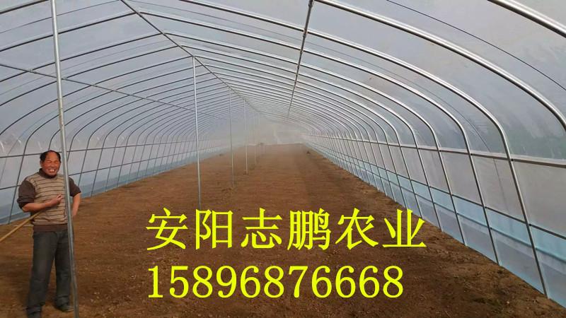 建一亩地蔬菜温室大棚造价多少钱