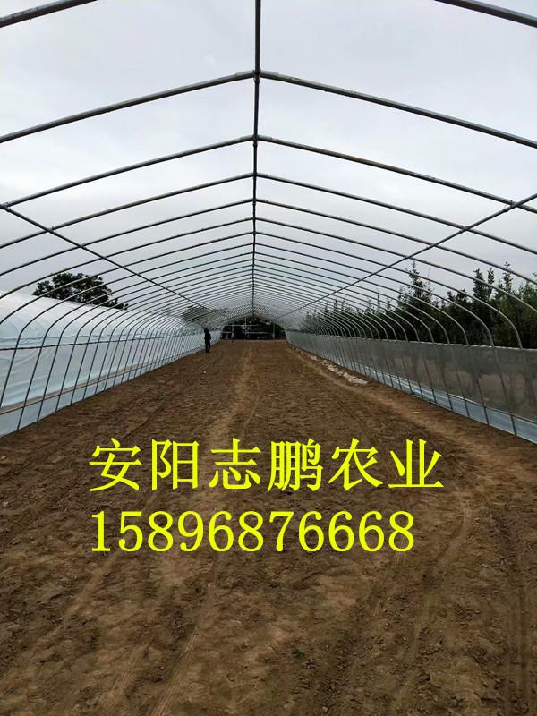 建造一亩地的内保温温室大棚需要多少钱