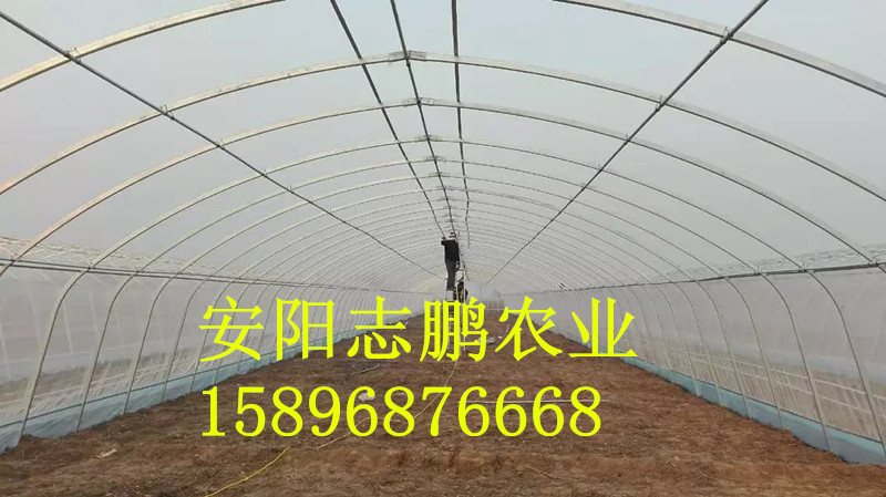 一亩阳光板温室大棚造价多少钱