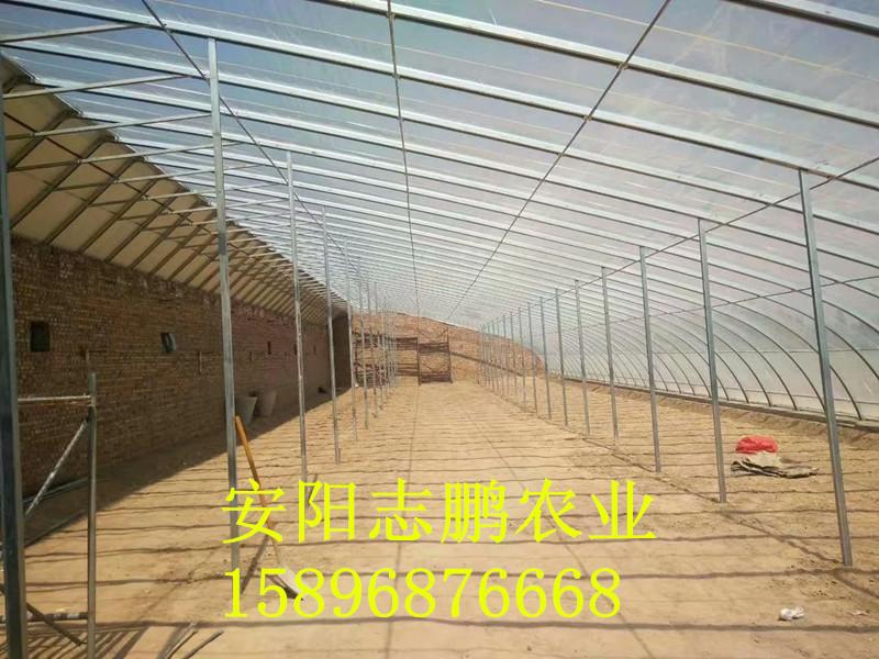 郑州几字型钢大棚安装建设
