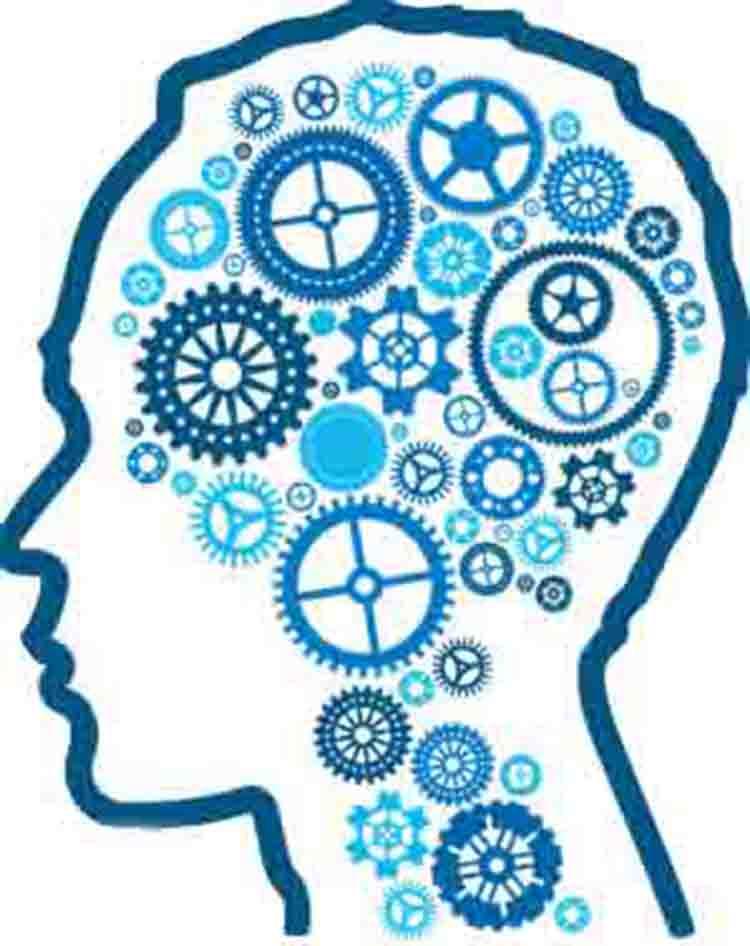 脑认知能力分析与训练系统
