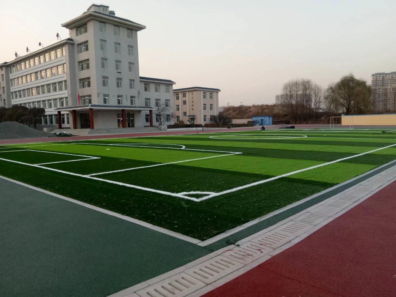 天津足球场人工草坪基础做法与施工
