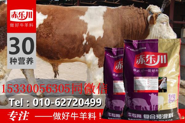 内蒙古育肥牛专用预混饲料厂家