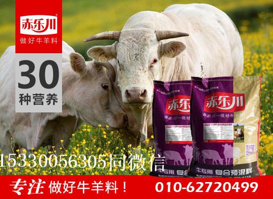 空怀期母牛专用营养饲料