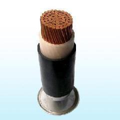 zr-kc-hs200-ff46p阻燃电缆高清照片