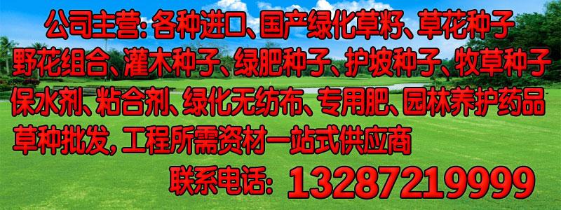 淮北批发北方护坡草种种子价格