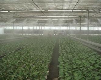温室加湿温室增湿